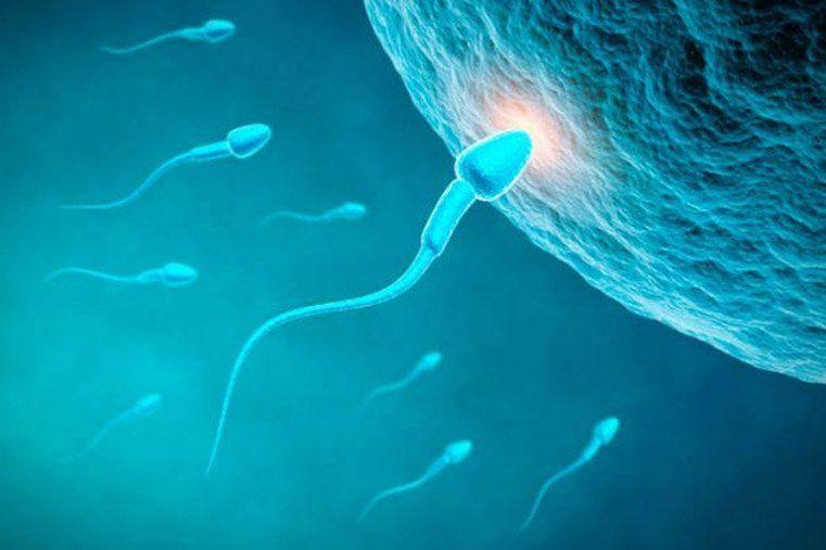 Advierten que en 2045 las parejas deberían usar la fertilización asistida