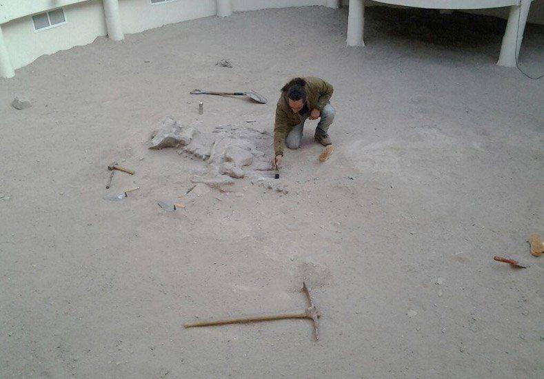 Inauguraron el Museo de Sitio William Sill en el Parque Ischigualasto