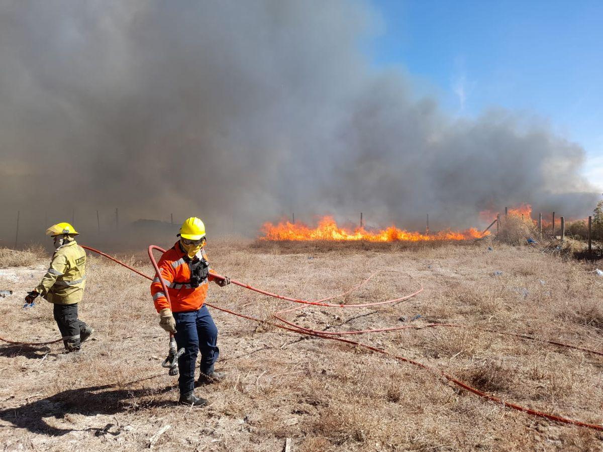Bomberos debieron sofocar una seguidilla de incendios.