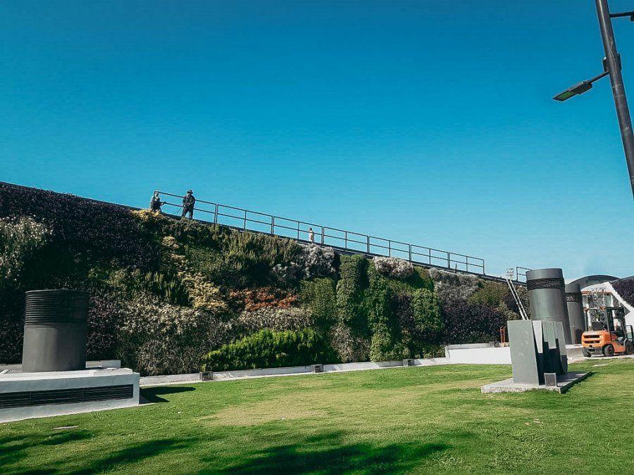 Reforzaron los jardines verticales del museo del Parque
