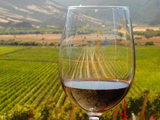 Mejoran el vino tinto a través de una novedosa técnica