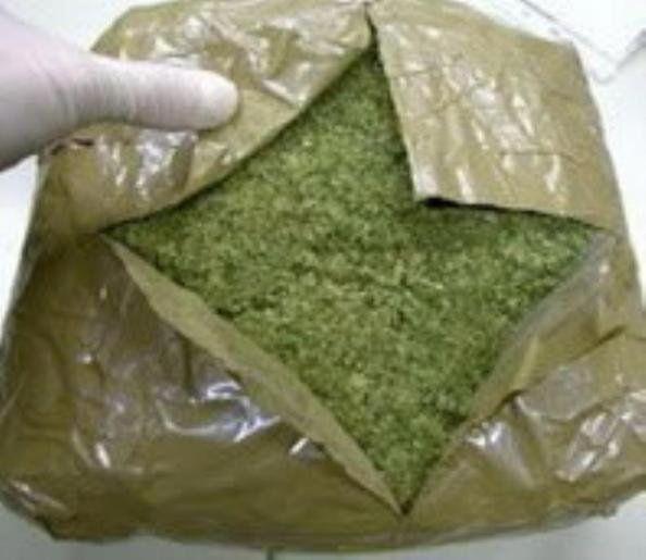 Incautaron 30 kilos de marihuana en un colectivo que venía de Mendoza