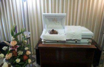 Como lo amaba, le hizo un funeral a su perro y lo despidió en un lujoso cajón