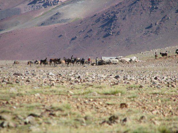 Chile no quiere pagar por la leña y el pastoreo de animales en San Juan