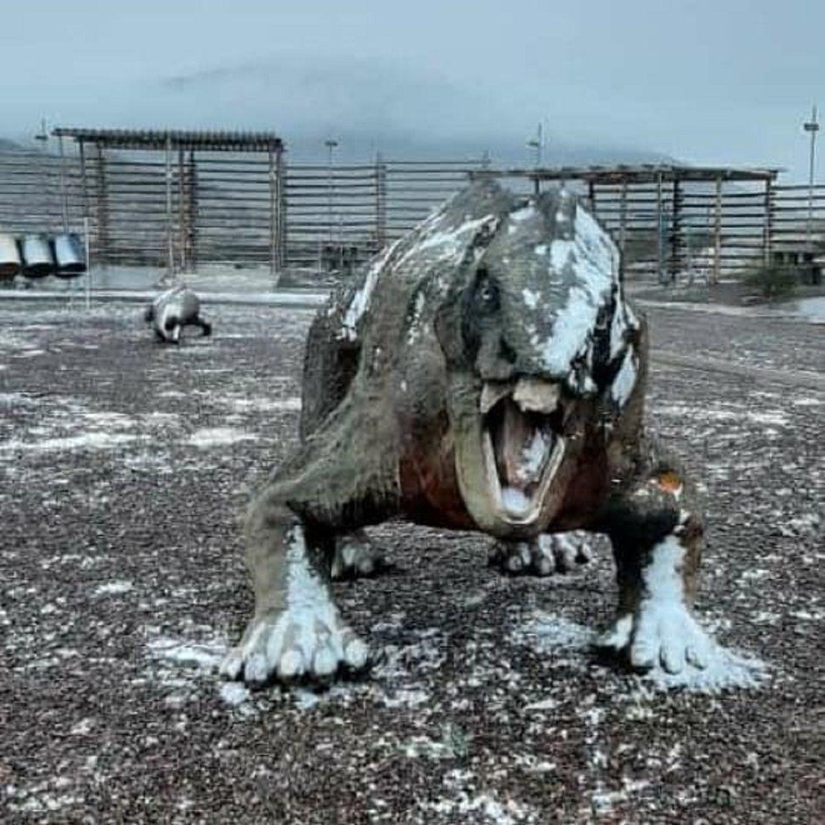 Nevó en Ischigualasto. Fuente: Info Valle Fértil.
