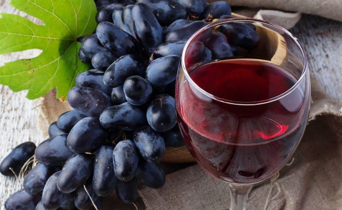 Estos son los vinos que recibieron Gran Oro