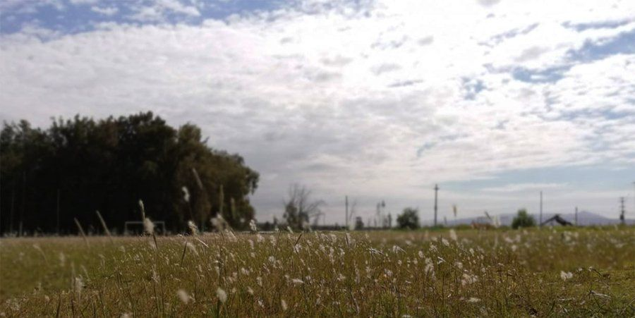 Las nubes intentarán adueñarse del domingo