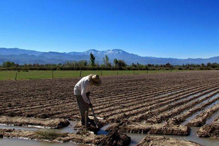 Desde Nación, el sanjuanino Alós vio con optimismo el año para la economía y la producción