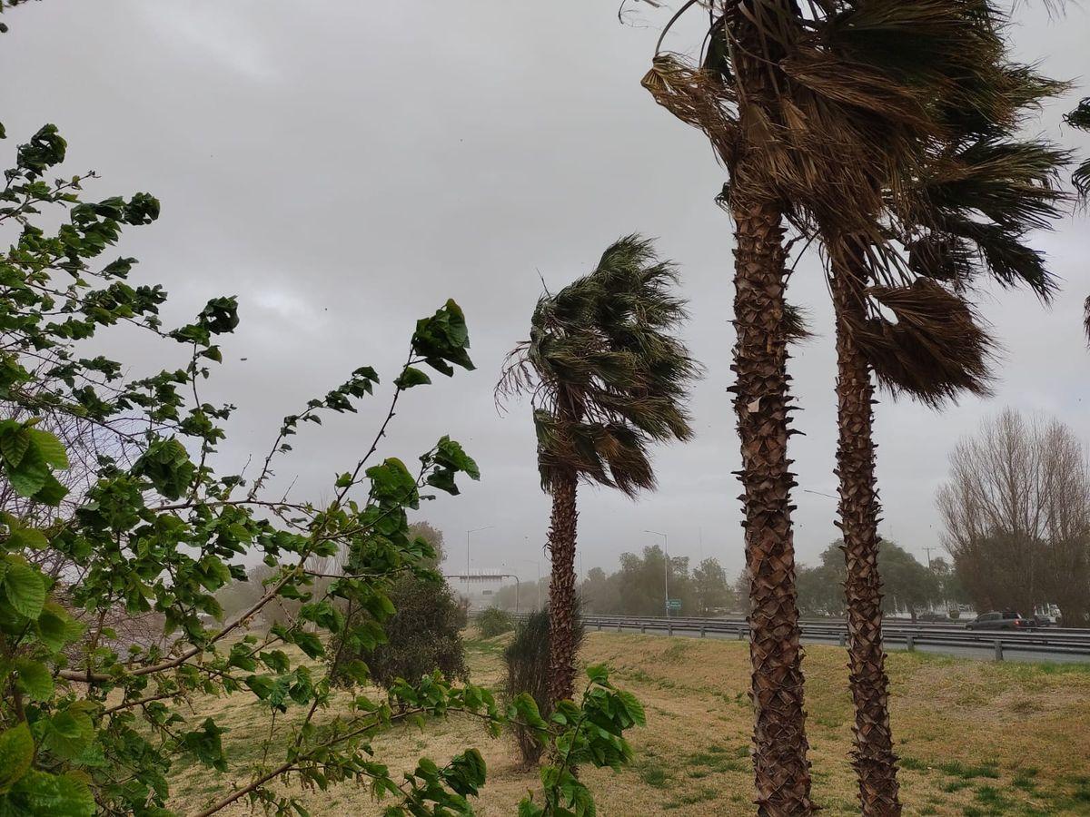 El invierno da sus últimos coletazos y persisten las fuertes ráfagas de viento sur