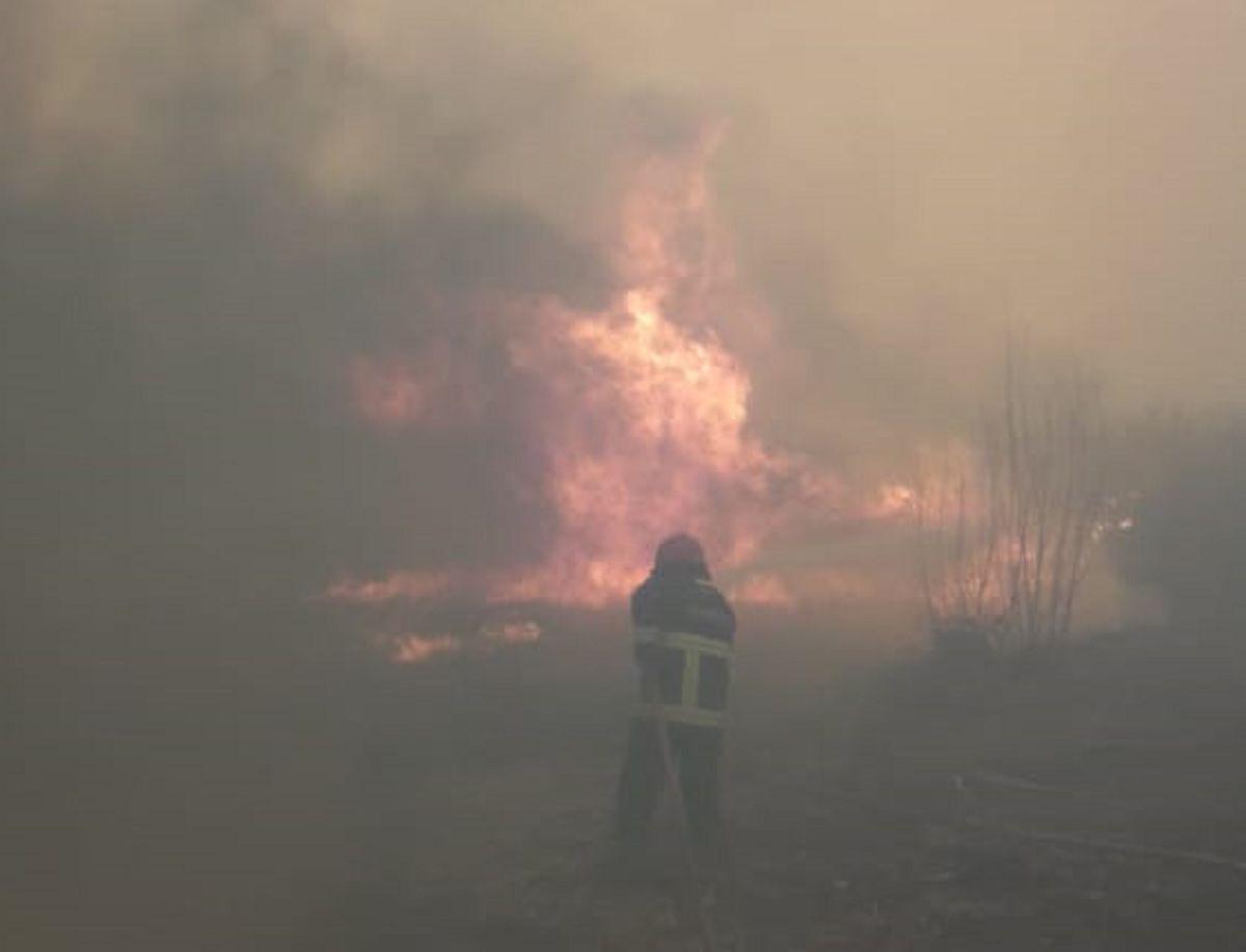 Quiso quemar pastizales, provocó un incendio forestal y fue multado