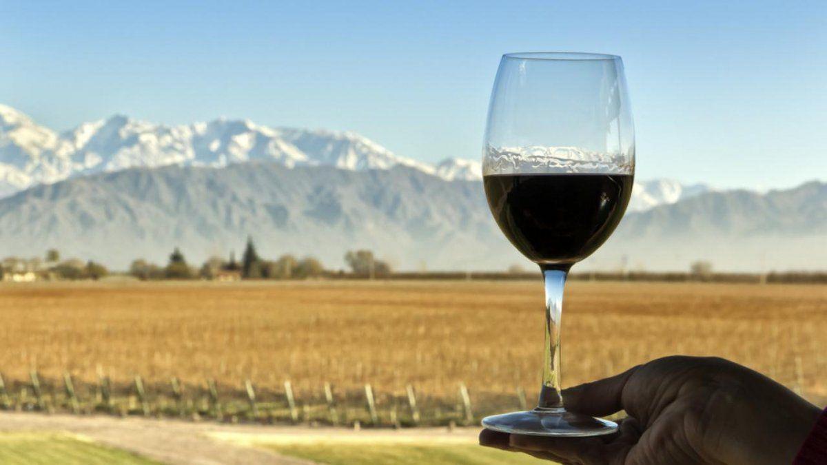 El Gobierno se comprometió a aprovechar el enorme potencial del vino
