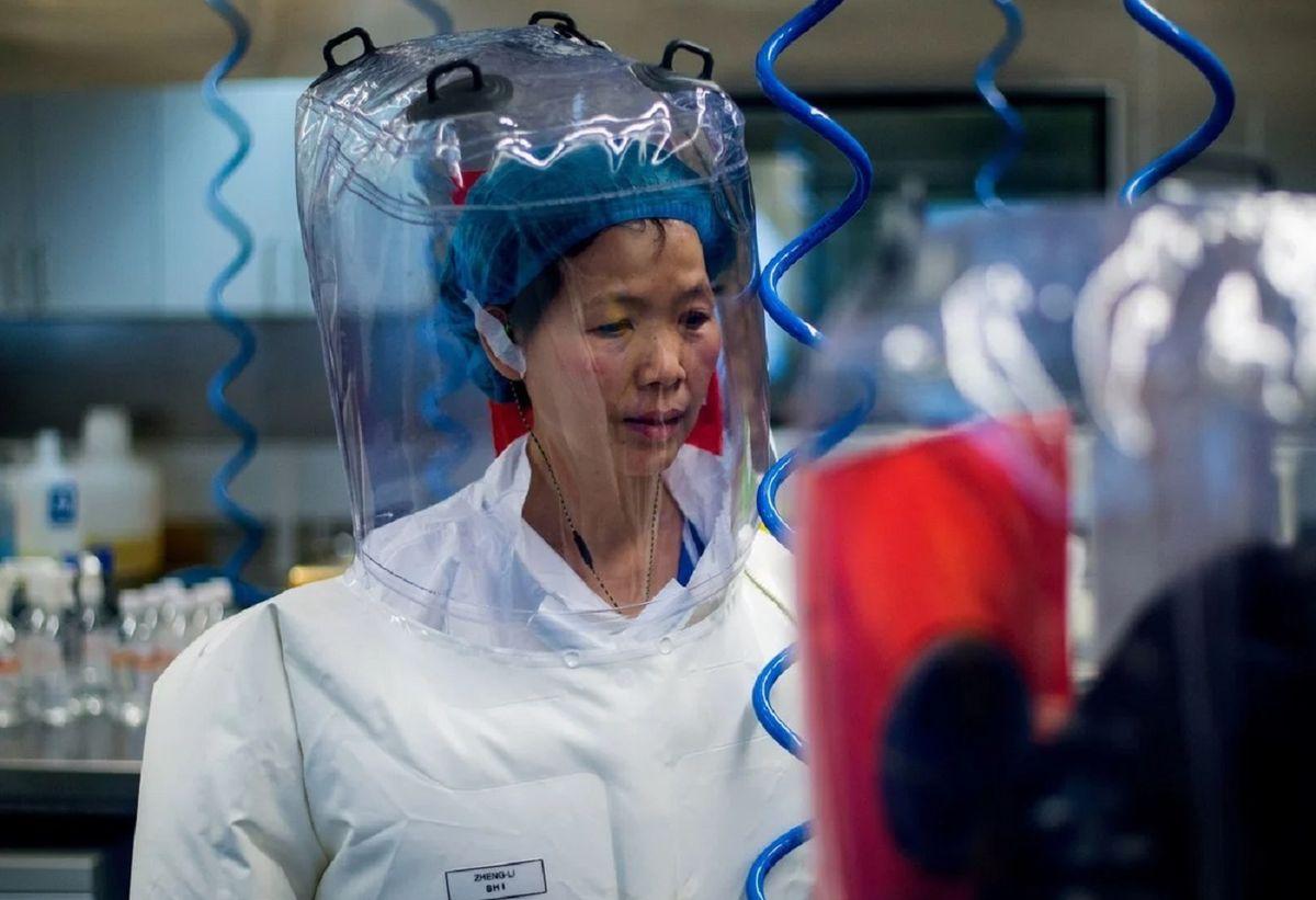 Habló la viróloga que descubrió el COVID: Los científicos del Wuhan son inocentes