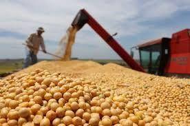 Argentina subirá un 3% el impuesto a exportaciones de soja