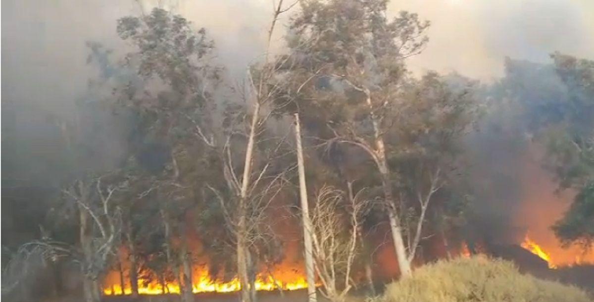 Gran incendio en el camping Don Bosco: el viento complicó las tareas