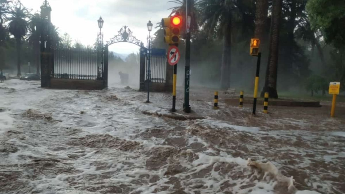 Mendoza bajo el agua: una gran tormenta azotó a la vecina provincia