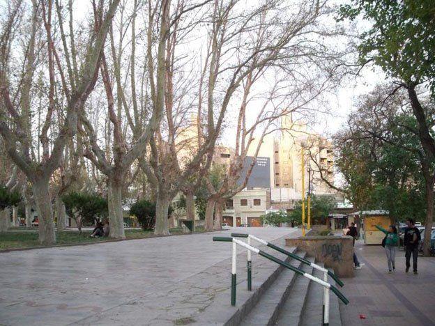 Capital podará y cortará los árboles secos de la plaza Laprida