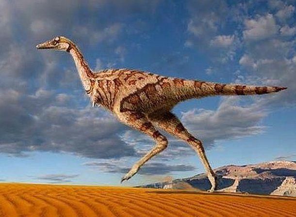Encuentran un dinosaurio del tamaño de un loro