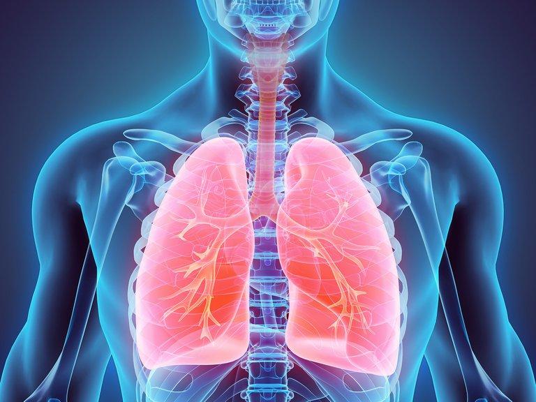 Cáncer de pulmón: avances científicos se acercan a la cura