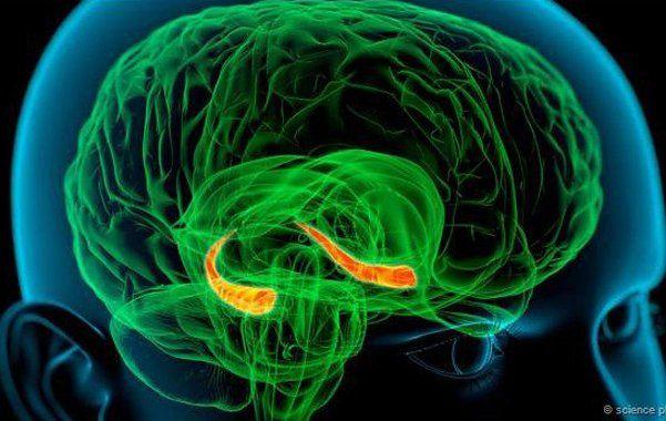 Hacé estos ejercicios para mantener activo tu cerebro