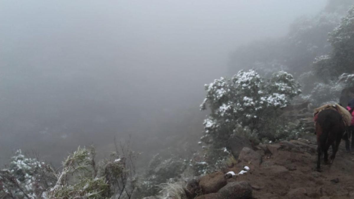 Viral: Docentes en mula en medio de la nieve, un reconocimiento a la vocación