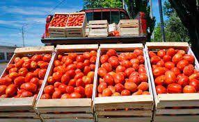 Robaron tres cajones de tomate y fueron detenidos