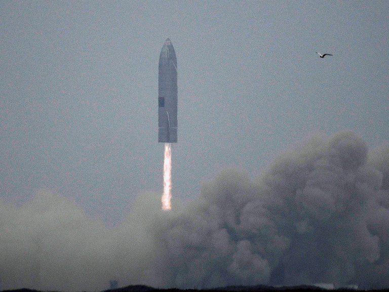 El cohete Starship de SpaceX aterrizó con éxito