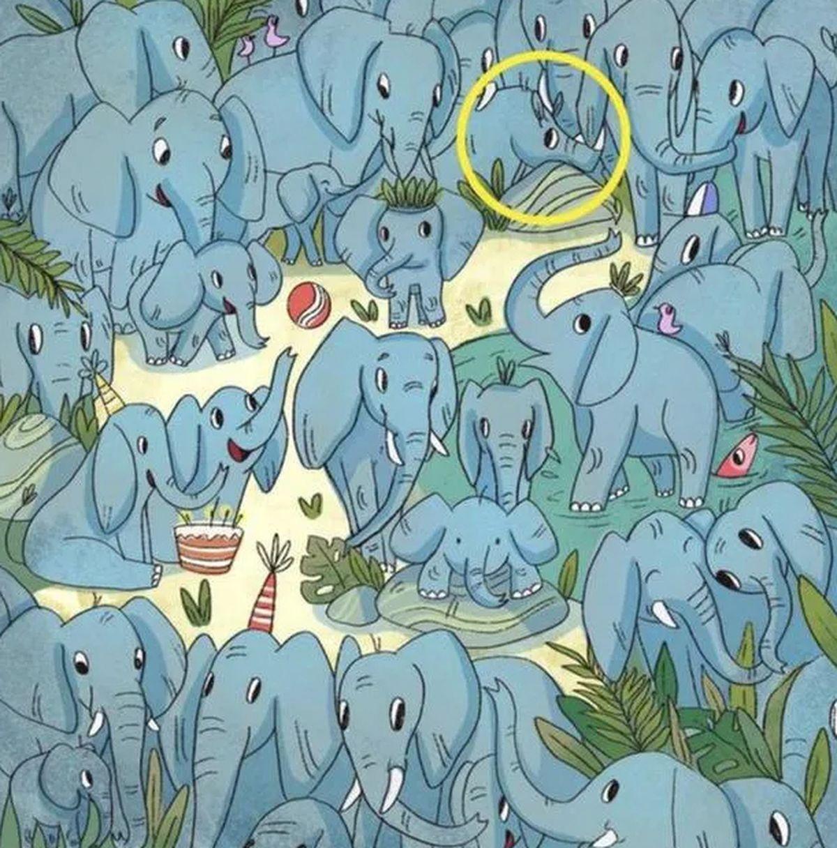 Ubicá en 5 segundos al rinoceronte camuflado entre los elefantes