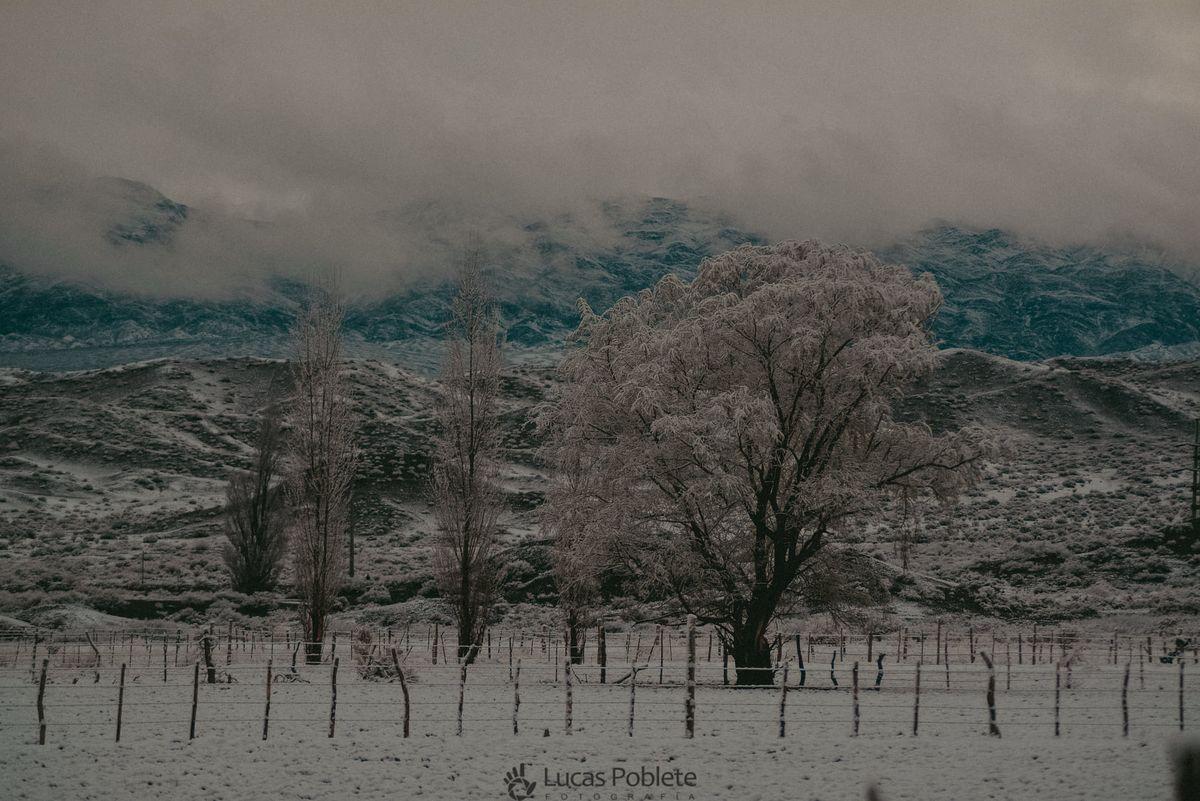 Las postales de una casi primavera nevada