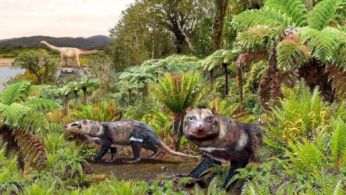 Argentina, Brasil y Chile descubrieron un nuevo mamífero que habitó la patagonia