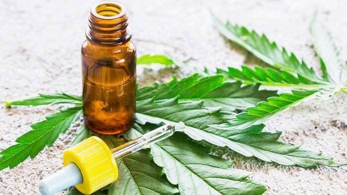 Cannabis medicinal: cuáles son sus propiedades