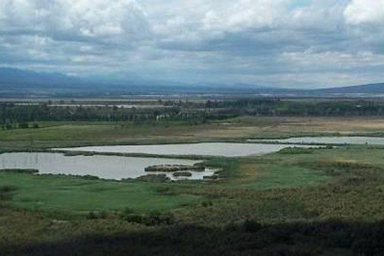 Licitaron obras para el acueducto Gran Tulum